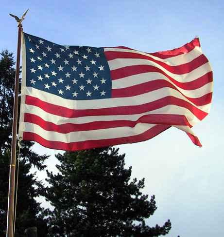 the_flag